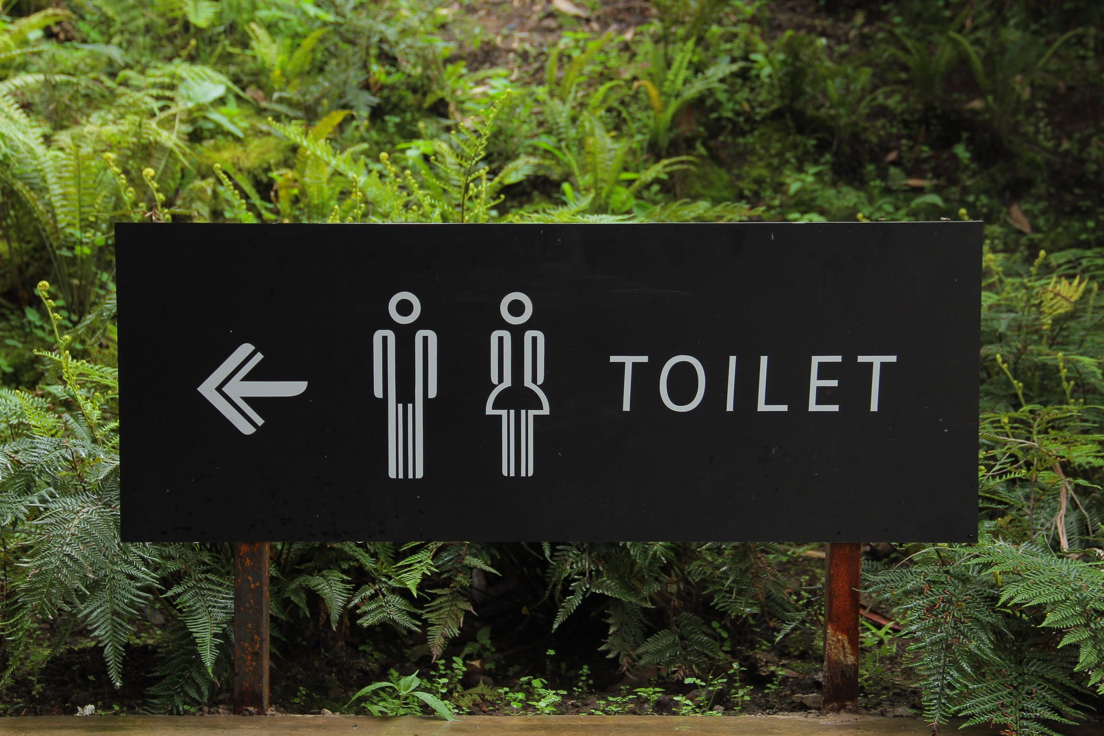 How to fix common toilet problems and keep costs down