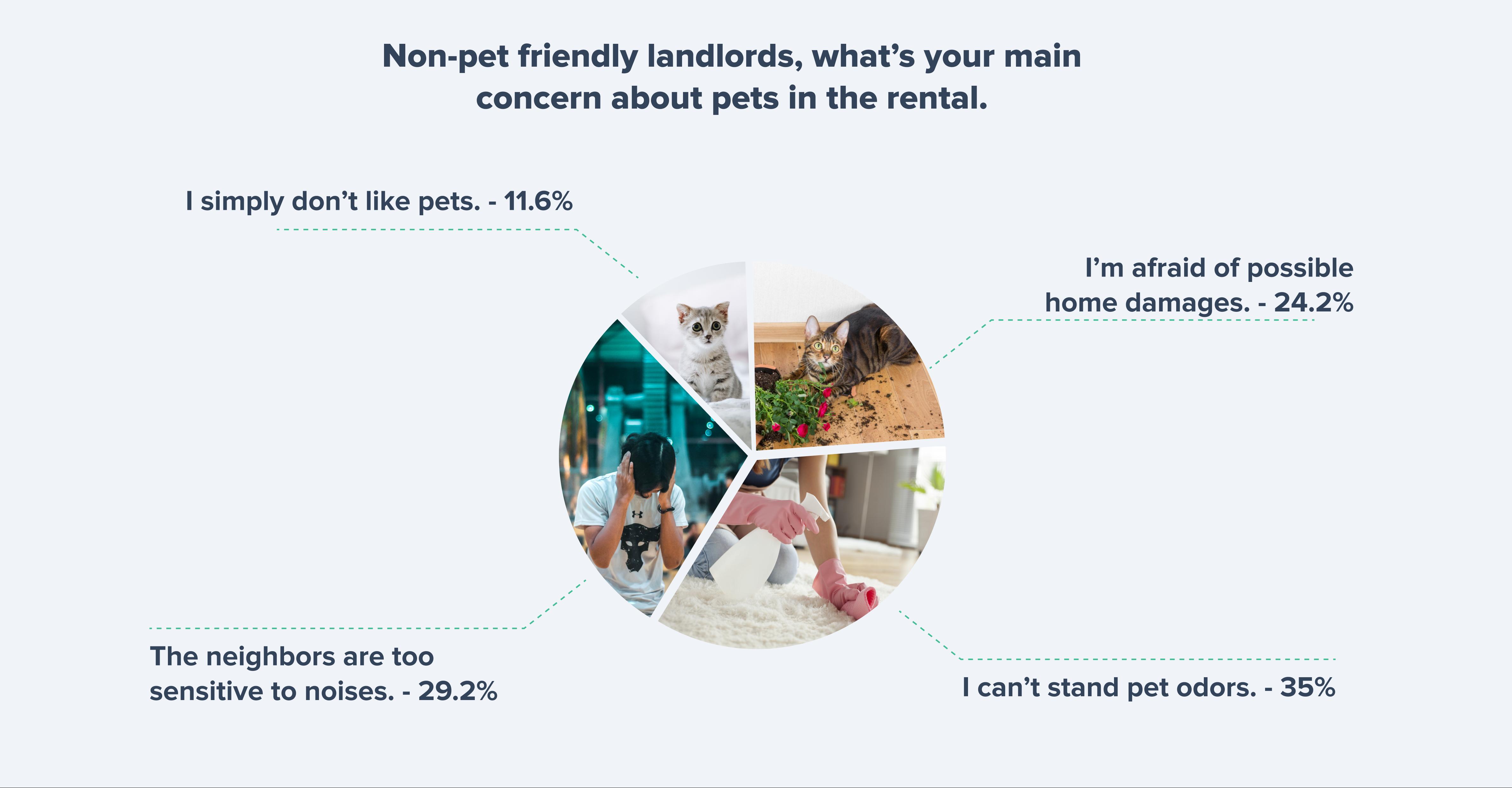 Non-pet friendly landlords